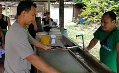 Work_Gallery_Photo_12_Making_Paper_from_Dung