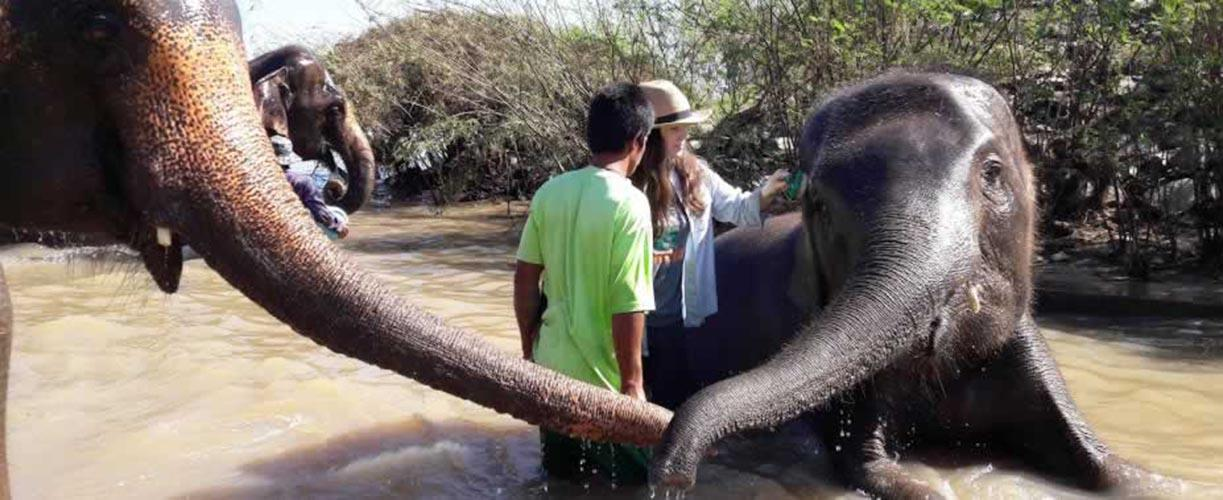 Volunteer Vacations in Thailand with Globe Aware