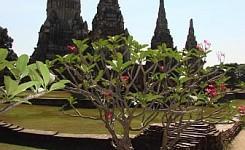 Thailand_33